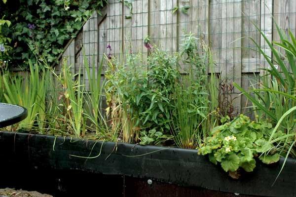 Planten plantenfilter residentieel complex for Dus welke architectuur